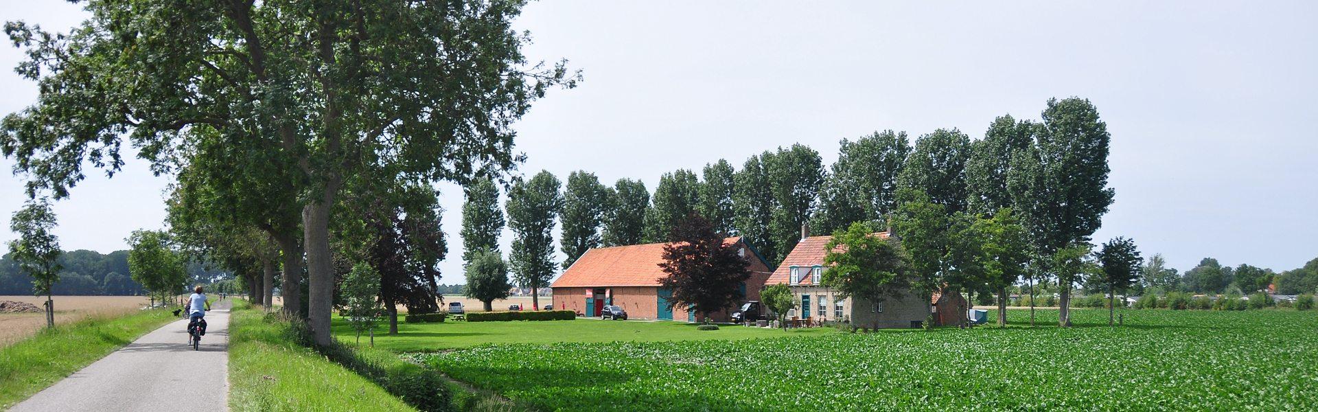 arrangementen Nieuwvliet