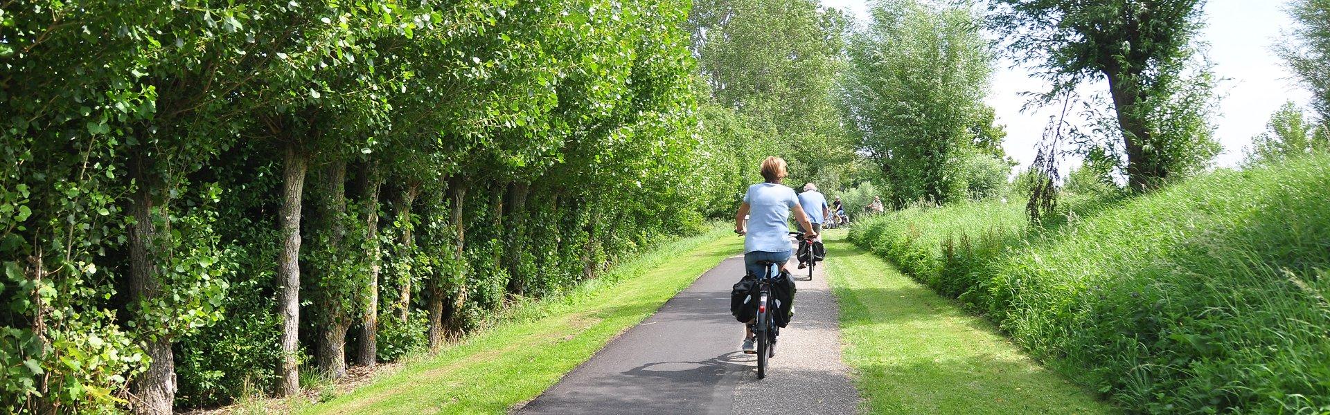 natuur fietsen nieuwvliet
